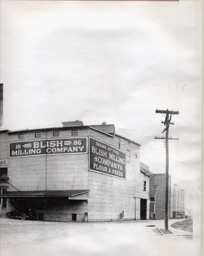 Blish Mill