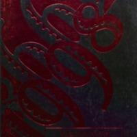 Medora 1998.pdf