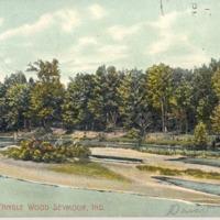Tangle Wood and Rapp Grove, Seymour IN postcard