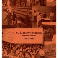 Brown 1981-82.pdf