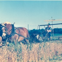 Horse-Drawn Farm Machinery